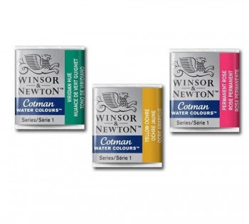 WINSOR & NEWTON ACUARELA COTMAN 1/2 GODET
